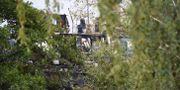 Bild från pirathamnen vid Årstaviken som började rivas i veckan Henrik Montgomery/TT / TT NYHETSBYRÅN