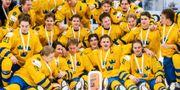 Det svenska bronslaget. SIMON HASTEGÅRD / BILDBYRÅN