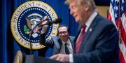 Steve Mnuchin och Donald Trump. Andrew Harnik / TT NYHETSBYRÅN/ NTB Scanpix
