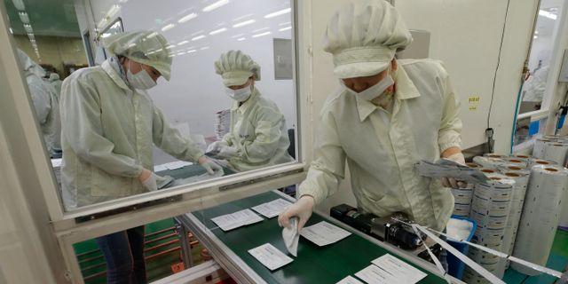 Personal arbetar med att framställa testkit på ett laboratorium i Chuncheon i Sydkorea. Lee Jin-man / TT NYHETSBYRÅN