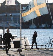Fotgängare I Stockholm. Fredrik Sandberg/TT / TT NYHETSBYRÅN