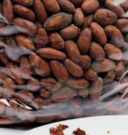 Priset på kakao ligger på rekordhög nivå.  David Mercado / TT NYHETSBYRÅN