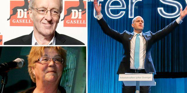 Reinfeldt om rodgron tagsatsning inte ansvarsfullt
