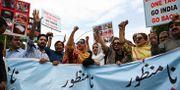 Pakistanier protesterar i Kashmir efter Indiens besked. AAMIR QURESHI / AFP