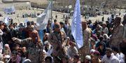 Talibaner och afghansk civilbefolkning i Alingar. NOORULLAH SHIRZADA / TT NYHETSBYRÅN