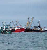 Brittiska fiskebåtar i Engelska kanalen.   TT / NTB Scanpix