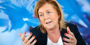 Maria Arnholm (L). Christine Olsson/TT / TT NYHETSBYRÅN
