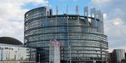 EU-parlamentet i Strasbourg. Arkivbild. HENRIK MONTGOMERY / TT / TT NYHETSBYRÅN