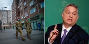 Militärpolis i Ungern / Viktor Orbán TT