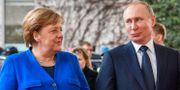 Angela Merkel och Vladimir Putin idag. JOHN MACDOUGALL / AFP