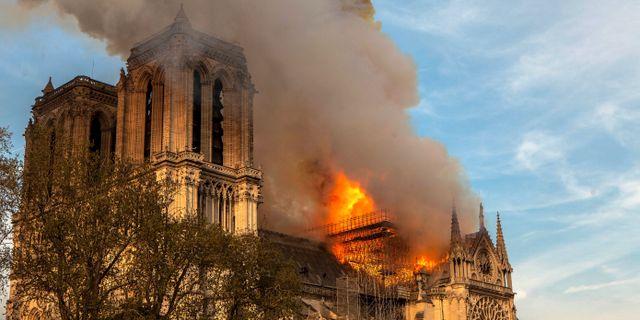 Katedralen Notre-Dame blev förstörd i en brand den 15 april.  Vanessa Pena / TT NYHETSBYRÅN/ NTB Scanpix