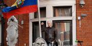 Julian Assange. Matt Dunham / TT / NTB Scanpix