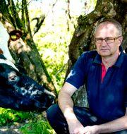 Arkivbild: LRF:s förbundsordförande Palle Borgström. Adam Ihse/TT / TT NYHETSBYRÅN