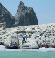 Ön är helt täckt i aska. Social Media / TT NYHETSBYRÅN