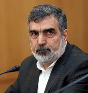Behrouz Kamalvandi, talesman för Irans atomenergiorganisation AEOI.  Ebrahim Noroozi / TT NYHETSBYRÅN