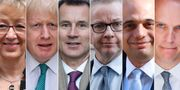 Leadsom, Johnson, Hunt, Gove, Javid och Raab STF / AFP