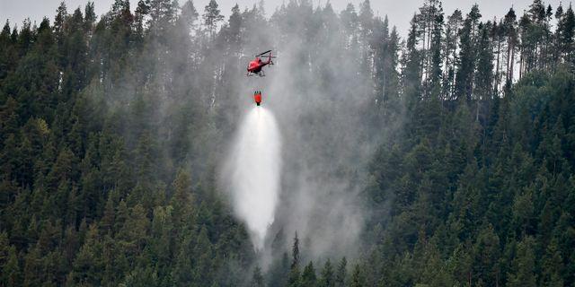 Släckningen av förra sommarens skogsbränder. Robert Henriksson/TT / TT NYHETSBYRÅN