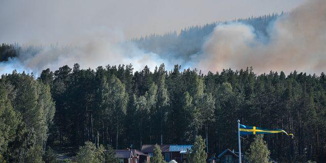 Skogsbrand i Enskogen utanför Ljusdal. Arkivbild. Maja Suslin/TT / TT NYHETSBYRÅN
