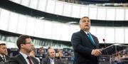 Viktor Orbán under sitt tal i parlamentet på tisdagen. Jean-Francois Badias / TT / NTB Scanpix