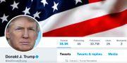 Donald Trumps Twitterprofil. HANDOUT / TT NYHETSBYRÅN
