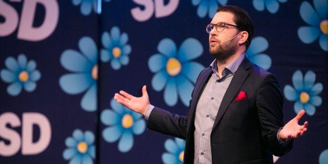 SD-ledaren Jimmie Åkesson.  Per Groth/TT / TT NYHETSBYRÅN