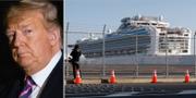 Donald Trump/Fartyget Diamond Princess. TT