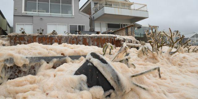 Vågskum i Australien orsakat av tung nederbörd. Joel Carrett / TT NYHETSBYRÅN