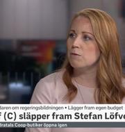 Annie Lööf.  SVT