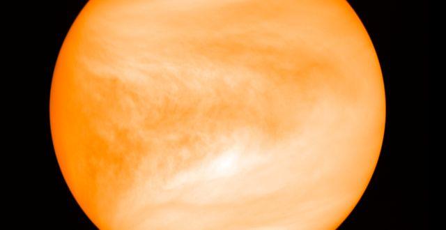 Venus. TT NYHETSBYRÅN