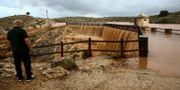 Översvämningar i spanska staden Almansa. STRINGER / TT NYHETSBYRÅN