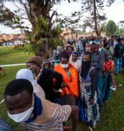 Väljare köar för att få rösta i Kampala. Jerome Delay / TT NYHETSBYRÅN