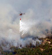 Skogsbrand i Sala kommun i Västmanland 2014.  JOCKE BERGLUND / TT / TT NYHETSBYRÅN