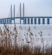 Öresundsbron sedd från Bunkeflostrand söder om Malmö när vårsolen värmde på söndagen på en bild från tidigare i April Johan Nilsson/TT / TT NYHETSBYRÅN