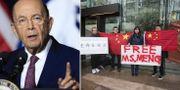 Ross. Demonstranter som kräver Mengs frihet i Kanada.  TT