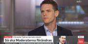 SVT/Skärmavbild.