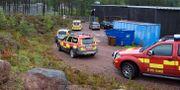 En djurskötare vid Orsa Rovdjurspark dog av björnattacken den 4 augusti i år. Ulf Palm/TT / TT NYHETSBYRÅN