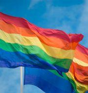 Pride-flaggor, Dotter, Tommy Körberg.  TT