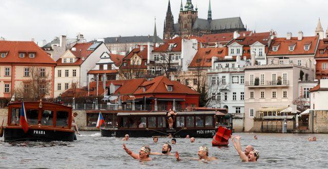Vinterbadare i Tjeckiens huvudstad Prag, 2019.   Petr David Josek / TT NYHETSBYRÅN