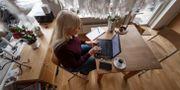 Illustrationsbild. En kvinna arbetar hemifrån. Stina Stjernkvist/TT / TT NYHETSBYRÅN