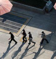 Säkerhetspersonal med kravallsköldar på väg mot Evergrandes huvudkontor i Shenzhen.  Ng Han Guan / TT NYHETSBYRÅN