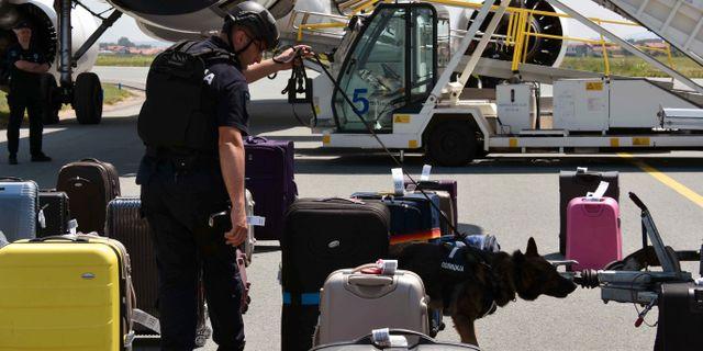 En bombhund söker igenom väskor i Belgrad efter bombhotet. TT NYHETSBYRÅN/ NTB Scanpix