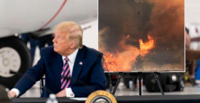 Donald Trump. Andrew Harnik / TT NYHETSBYRÅN