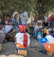 Flyktingar från Tigray-provinsen. Fitalew Bahiru / TT NYHETSBYRÅN
