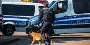 Bild från gripandet av 28-åringen. Christoph Schmidt / TT / NTB Scanpix