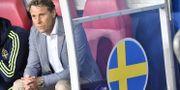 Håkan Ericson. Jonas Ekströmer/TT / TT NYHETSBYRÅN