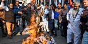Protester mot kvinnovåldet i Indien. NARINDER NANU / AFP
