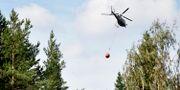 Arkivbild på en vattenbombande helikopter. Erik Simander/TT / TT NYHETSBYRÅN