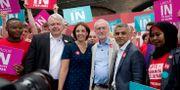"""Carwyn Jones, näst längst till vänster, tillsammans med Kezia Dugdale, Jeremy Corbyn och Sadiq Khan under ett """"stanna i EU""""-event i juni 2016. Matt Dunham / TT NYHETSBYRÅN"""