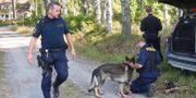 Polisen söker efter rymmaren i Laxå. Jeppe Gustafsson/TT / TT NYHETSBYRÅN