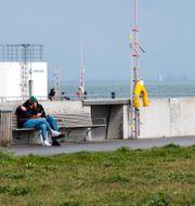 Härifrån skall det danska bajsvattnet pumpas ut. Hamnpromenaden vid pumpstationen i hamnen i Skovshoved norr om Köpenhamn med Barsebäcks kärnkraftverk skymtande i diset Johan Nilsson/TT / TT NYHETSBYRÅN